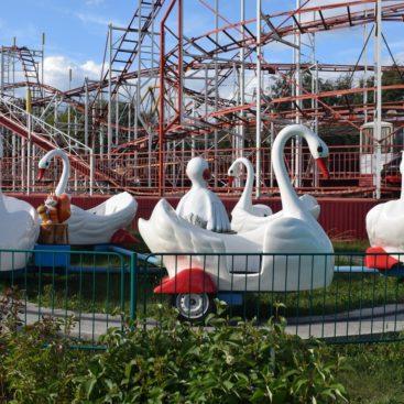 Купить аттракцион Лебеди